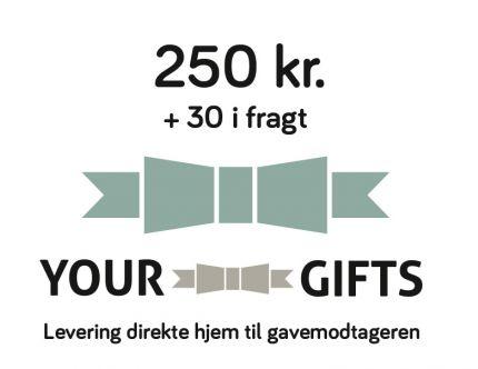 YourGifts Gavekort Kr. 250,- + Kr. 30,- i fragt